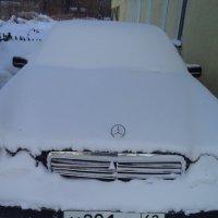 Что русскому -мороз, то немцу - смерть. :: - Ivolga