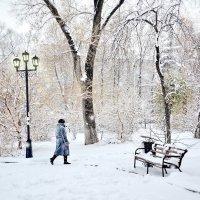 Заметает зима :: Светлана Prolubshikov@