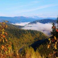 Долина Белой Усы :: Сергей Чиняев