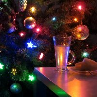 Я встречаю Новый год :: Татьяна Смоляниченко