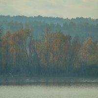 туманное озеро :: Stasya♥♥ ♥♥Stasya