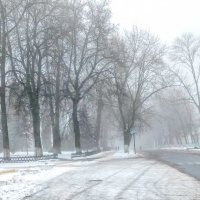 Когда зимой туман :: Сергей Тарабара