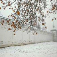 У монастырской стены :: Сергей Тарабара