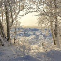 С Новым Годом, друзья! :: Валентина Харламова