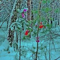 Лесные встречи :: Raduzka (Надежда Веркина)