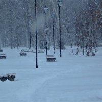 Снежное утро. :: Венера Чуйкова