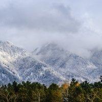 Холодно в горах :: Владимир Гришин