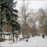 Зимний Ростов :: Нина Бутко