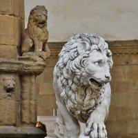 Флорентийский лев :: Natali Positive