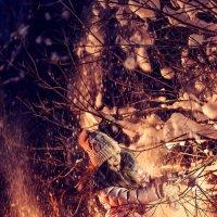 Зима Ночь Лес :: НАДЕЖДА Солодовник
