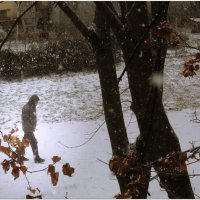 Зимние этюды :: Людмила