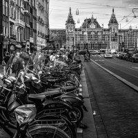 Серия:Амстердам. :: Александр