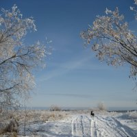 У Ленской протоки :: Anna Ivanova