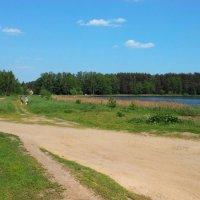 У озера; май :: Николай Мартынов