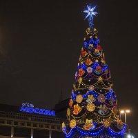 Старый Новый Год. :: Алексей Никитин
