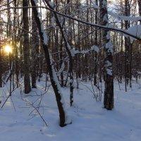 Экватор Зимы :: Андрей Лукьянов