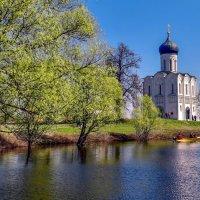 Весна на Нерли... :: АЛЕКСАНДР СУВОРОВ