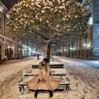 А мені не холодно... :: Степан Карачко