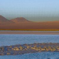 начинается закат на лагуне Цехар :: Георгий А