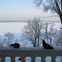 Снежная Волга :: Надежда