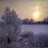 Мороз и солнце :: Сергей Малашкин