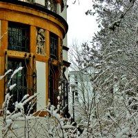 По  зимнему  Лауфу :: backareva.irina Бакарева