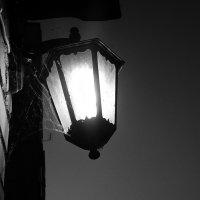 Ночь, улица, фонарь... :: Grey Bishop