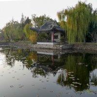 Прогулка по парку Юаньтоучжу (рядом с оз. Тайху, Китай) :: Юрий Поляков