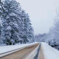 Зимняя сказка :: Анастасия Володина