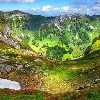 краски альпийского лета :: Elena Wymann