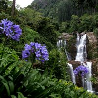 Водопад-2 :: Любовь