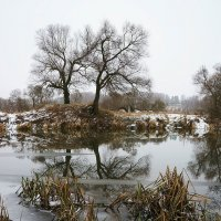 Начало зимы на Протве :: Сергей Курников