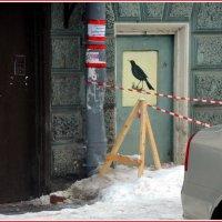 кыш, кыш, снег с крыш! негде птичке погулять) :: sv.kaschuk