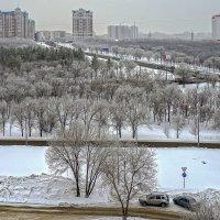 Зима – королева холодных ветров.... :: Elena Izotova