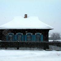 Зимние шапки надели дома... :: Нэля Лысенко