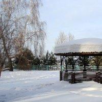 Зимний этюд . Январь. :: Мила Бовкун