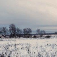 Просто зима :: Наташа Акимова