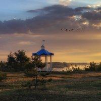 Летели гуси-лебеди :: Марина