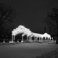 Зимний променад ... :: Лариса Корж