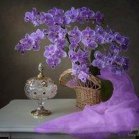 Натюрморт с мини орхидеей :: Ирина Приходько