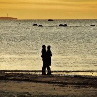 На берегу моря. :: Aida10