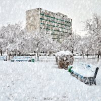 Запуржило, замело :: Анатолий Чикчирный