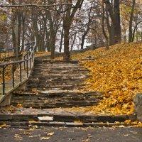 Осенняя лестница :: Ольга Винницкая (Olenka)