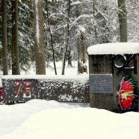 В парке после снегопада  5 :: Сергей