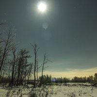 морозная свежесть :: Геннадий Свистов