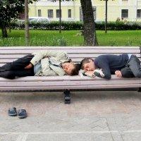 Двое на скамейке и собака :: Ольга Довженко