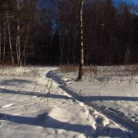 Зима!.. Фотограф торжествует! :: Андрей Лукьянов