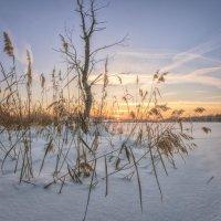 Закат на Каринском озере. :: Николай Андреев