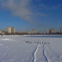 Однажды в студеную зимнюю пору :: Андрей Лукьянов