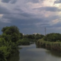 Перед грозой ... :: Светлана Мельник